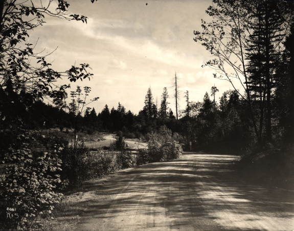 View from Interlaken Boulevard where it joins Lake Washington Boulevard in Washington Park (Seattle Municipal Archives)